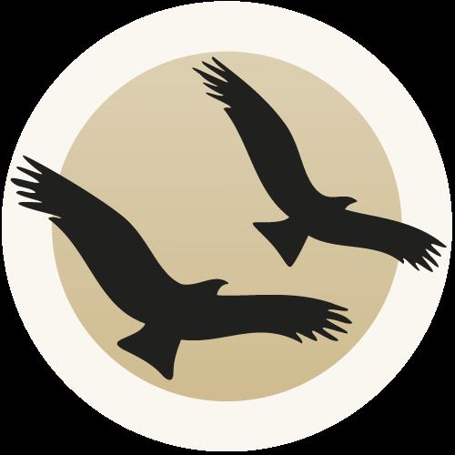 Hakomi Berlin Logo
